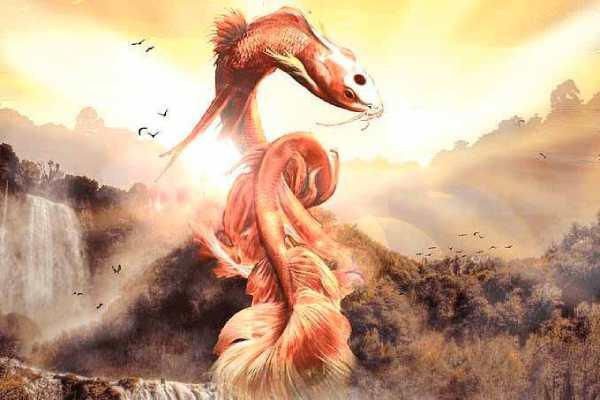 pez koi dragon leyenda