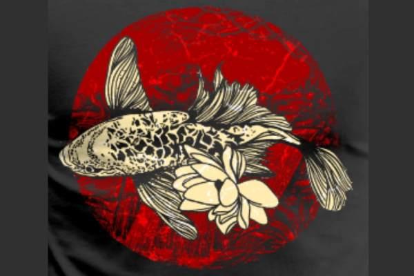 pez koi origen japon