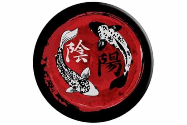 pez koi yin yang carp