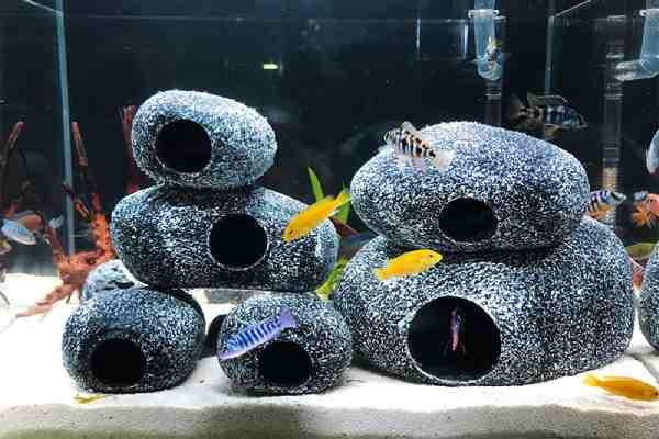 Cerámica en el acuario