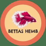 icono peces betta hembra tabla de compatibilidad
