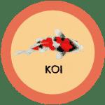icono peces koi tabla de compatibilidad