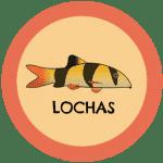 icono peces lochas tabla de compatibilidad