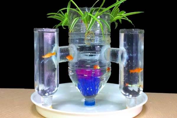Plástico en acuario
